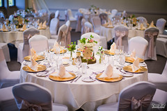 Chris & Amy's Wedding (FestivitiesMN) Tags: arboretum minneapolisweddingphotographer oakridgehotelconferencecenter fun ericvestphotography outsidephotographer goldcharger blush napkins centerpieces