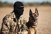 Training taktischer freier Fall (Offizieller Auftritt der Bundeswehr) Tags: soldaten kommandospezialkräfte ksk trainieren training taktischefreifaller freifallspringen kommandosoldaten ausbildung zugriffsdiensthund diensthund hund diego hundeführer diensthundeführer