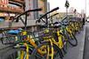 Too Many Bicycles ? (█ Slices of Light █▀ ▀ ▀) Tags: bicycle bike share rent rental sidewalk street urban urbanslices beijing 北京 china 中国 panasonic lumix tz100 zs100