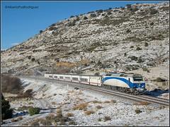 Zarzalejo. (pazalberto269) Tags: snow trainspotting tracks trainspotter nikon madrid trenhotel camas spain speed convencional d5300 diésel