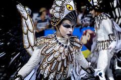 A.C.S.E.G.R.E.S Novo Império (Lucas Calazans V.) Tags: carnaval carnival vitoria desfile samba enredo festa cores colors nikon canon 7d
