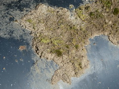 Across the Pacific (ART NAHPRO) Tags: skull island tiny worlds small islands
