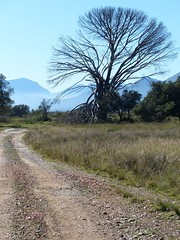 Bartholomeus Klip reserve, Western Cape