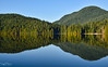 Sasamat Lake Reflections - Belcarra Regional Park (SonjaPetersonPh♡tography ♡ Away Mar. 21-25) Tags: sasamat lake anmore bc britishcolumbia canada nature trails naturetrails hikingtrails hiking nikon nikond5300 landscape reflections waterreflections portmoody mountainlandscape floatingbridge water belcarraregionalpark belcarra sasamatlakefloatingbridge fishing forest trees