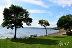 Lago di Bolsena - Italy (Biagio ( Ricordi )) Tags: lago bolsena lazio italy alberi tree nuvole acqua panchina amore love cielo
