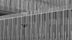 Structure (laga2001) Tags: cittadelsole rom roma lazio italien it buildings structure texture architecture lamp minimalism black white grey monochrome vertical lines