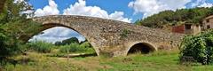 El pont sense riu (i2). (josepponsibusquet.) Tags: pont puente arquitectura romànic ter riu rio aigua agua santjuliàdelllor santjuliàbonmatí elpontdesantjulià laselva catalunya catalonia cataluña pontsenseriu puentesinrio natura naturaleza samsung8s samsung mòbil móvil samsungs8