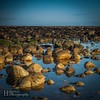Photo (ihimages) Tags: ifttt instagram northumberland alnmouth coast sea rock