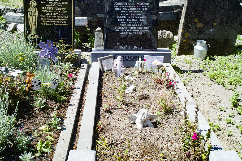 BACK IN JANUARY 2009 I VISITED THE OLD GRAVEYARD IN HOWTH [I HAD TO LEAVE BECAUSE I WAS ATTACKED BY GULLS]-135903