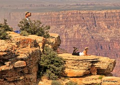 Enjoying the View (pandt) Tags: northrim grandcanyon nationalpark arizona cliff canyon outcropping nature people girls tree bush cowgirl hat outdoor canon eos 7d slr mountain view spectacular hikers hiking beauty