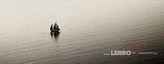 Lone Boat (Lerro Photography) Tags: sail boat sails sailboat still water ocean reflection bw black white blackwhite