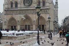 Notre-Dame-de-Paris (Lamia A) Tags: paris snow love white january neige hiver winter tourism tourist touristes notredame métro ratp cité