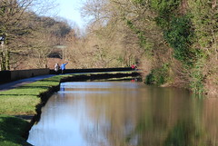 Canal reflections (Halliwell_Michael ## Offline mostlyl ##) Tags: brighouse brookfoot calderhebblecanal towpath westyorkshire nikond40x 2018 winter trees reflection reflections brighouseecho landscapes water
