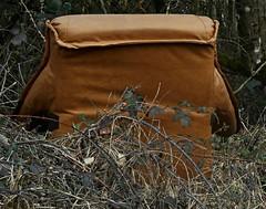 4 - Besoin d'isolement.... (melina1965) Tags: 2018 janvier january bourgogne saôneetloire saintvallier burgondy nikon coolpix s3700 hiver winter fauteuil armchair armchairs fauteuils
