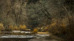 Calm (keith_shuley) Tags: morning winter creek stream bullcreek rust orange austin texas texashillcountry