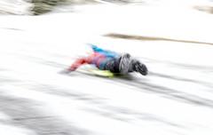 2018-02-21 sliding down the hill (Mary Wardell) Tags: blur unsharp sledder winter sports fun canon 80d portland oregon
