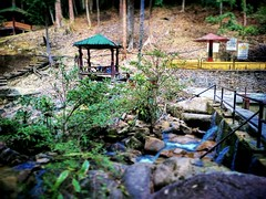 Jeram Toi 86, 71600 Kuala Klawang, Negeri Sembilan 013-670 2168 https://maps.google.com/?cid=11806334247236530384&hl=en&gl=gb #waterfall #trip #travel #holiday #traveling #tree #Asian #Malaysia #negerisembilan #holidayMalaysia #travelMalaysia #nature #大自然 (soonlung81) Tags: trip 大自然 森美兰 negerisembilan 自游马来西亚 度假 瀑布 traveling 马来西亚 green malaysia 马来西亚度假 waterfall holiday 旅行 亚洲 tree nature jeramtoi travelmalaysia holidaymalaysia 绿色 travel asian