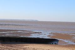 IMG_6914 (cindyincidentally) Tags: whitstable kent kentcoast britishbeach seaside seashore seasidetown