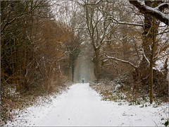 A run in the snow (Phil McIver) Tags: loughborough mucklinwood snow leicestershire