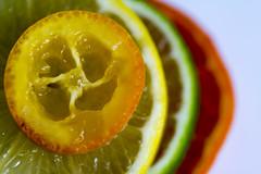 Citrus - Macro Mondays (Crisp-13) Tags: citrus macromondays macro mondays kumquat lemon lime mandarin orange slice fruit