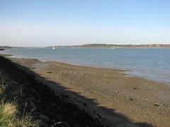 The River Orwell near Shotley (JonCombe) Tags: coastwalk193 suffolk stourandorwellwalk coast coastwalk orwell