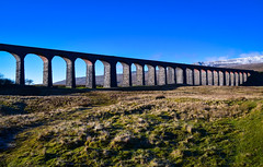 Batty Moss Viaduct (rustyruth1959) Tags: nikon nikond5600 tamron16300mm uk alamy england yorkshire yorkshiredalesnationalpark yorkshiredales hortoninribblesdale ribbleheadviaduct battymossviaduct viaduct valley riverribble bridge structure arches railway line railwayline settletocarlislerailway trains engineering navvies towns shantytowns smallpox accidents epidemic industrialaccidents whernside mountain snow landscape path ribbleheadviaductwalk grass frost bricks limestone limestoneblocks brickwork sky bluesky outdoor trees