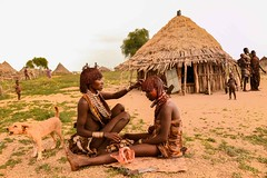 Hair Care (Rod Waddington) Tags: africa african afrique afrika äthiopien ethiopia ethiopian ethnic etiopia ethnicity ethiopie etiopian omo omovalley outdoor omoriver hamer hamar tribe traditional tribal culture cultural women hairstyle hair hut people village group tree