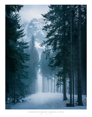 Leoganger Steinberge, Austria (AmBasteir) Tags: nikond810 sigma art sigma35mm landscape nature landschaft wald forest tree baum snow schnee winter austria österreich leogang nebel fog travel outdoors nikon 35mm breathtakinglandscapes