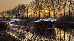 Adriana-Maria. (musette thierry) Tags: peniche bateau board fleuve lescaut musette couchédesoleil soleil arbre reflets nikon promenade belgique antoing