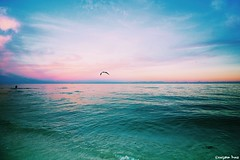Life Does Not (gusdiaz) Tags: sunset miami south beach colorful vsco vscocam nature naturephotography canon canonphotography tropical winter invierno mar oceano arena sand seagull gaviota bird ave gorgeous lovely