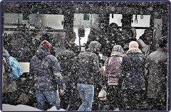 Winter in Bucharest (Ioan BACIVAROV Photography) Tags: winter iarna hiver snow zapada bucharest romania