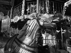 Un tour de manège !!! (François Tomasi) Tags: cheval horse yahoo google flickr françoistomasi tomasiphotography blackandwhite noiretblanc monochrome lights light lumière reflex nikon villedetours tours touraine indreetloire france europe digital numérique filtre pointdevue pointofview pov dark sombre animal photo photographie photography photoshop iso janvier 2018 lanouvellerépublique foire jeu game noir blanc white black