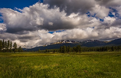 Spring Time in Oregon (McKendrick Photography) Tags: mountainmeadows cloudsoregon pines mountains