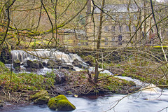 Hardcastle Crag (Kingsley_Allison) Tags: gibsonmill hardcastlecrag nationaltrust westyorkshire hebdenbridge water nikond7200 nikon beck national trust d7200