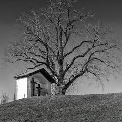 Kapelle beim Kloster Reutberg (Janos Kertesz) Tags: chapel religion church architecture religious christian building cross country white rural holy sacred catholic bayern bavaria kapelle