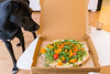 Hund betrachtet die Holy Guacamole »vegan« Pizza in der Schachtel (marcoverch) Tags: karneval cologne köln hund betrachtet holyguacamole »vegan« pizza schachtel noperson keineperson indoors drinnen sit sitzen wood holz dog relaxation entspannung cute niedlich furniture möbel woman frau looking schauend one ein family familie leisure freizeit contemporary zeitgenössisch dinner abendessen funny komisch lunch mittagessen sitting sitzung recreation erholung fun spas aircraft flight olympus skyline italia history heart sigma boats downtown