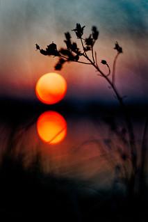 #171 - Sunset by the water / Západ u vody