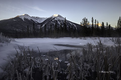 Frozen Lakes (Canon Queen Rocks (1,974,000 + views)) Tags: lake landscape landscapes vermillionlakes water ice hoarfrost reeds snow cold winter nature nationalpark banffnationalpark vista sky mountains mothernature momentsbycelinecom morning trees