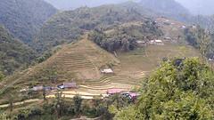 Vietnam-Sapa-Ta Van village-IMG_20180112_094224 (mmmmngai@rogers.com) Tags: sansảhồ làocai vietnam