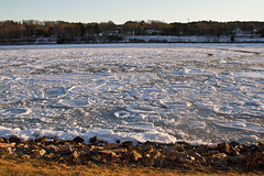 Ice Flows on the Canal (brucetopher) Tags: water ice sunset flow moving motion float floating winter cold arctic arcticblast weather freeze freezing frozen saltwater bay river canal stream current