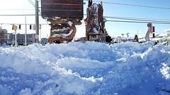 "Fenwick Island, Delaware ""mini golf in the snow"" (delmarvausa) Tags: snow fenwickislandde fenwickisland delmarva snowstorm january2018 delmarvapeninsula coastaldelmarva eastcoast beachtown fide fenwickislanddelaware southerndelaware midatlantic coastal sussexcountydelaware sussexde winter delaware coastaldelaware january grayson beach fideusa"