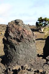 Tree Mold (wyojones) Tags: trails maunaulu hawai'ivolcanoesnationalpark treemolds ʻōhiʻatrees lavaflows basalt cooling solidification forest trees encased moldsoflava lavatrees wyojones np