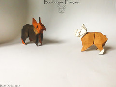 Bouledogue Français - Barth Dunkan. (Magic Fingaz) Tags: anjing barthdunkan chien chó dog gremlins hond hund köpek origami perro pies пас пес собака หมา 개 犬 狗