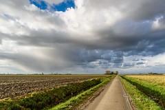 At the end of the road (Ellen van den Doel) Tags: natuur netherlands nature overflakkee nederland weer weather clouds goeree november 2017 road landschap regen weg sky rain landscape lucht sommelsdijk zuidholland nl
