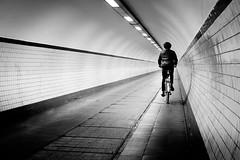 (fernando_gm) Tags: street man monochrome monocromo monocromatico blackandwhite bw blancoynegro bike bicicleta bici bicycle amberes antwerp anvers belgica belgium fujifilm fuji 1024mm xt1 simplicity calle callejera city ciudad lines lineas geometry geometría person persona human humano hombre