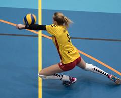 41203300 (roel.ubels) Tags: volleybal volleyball sport topsport sv dynamo apeldoorn topdivisie vv utrecht 2018 omnisport