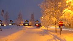 IMG_4371 (Mr Thinktank) Tags: raureif frost