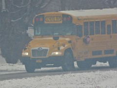 East End Bus Lines Inc. #0860P (ThoseGuys119) Tags: eastendbuslines orangecountytransitllc schoolbus maybrookny 2018 propane gasoline birdbus