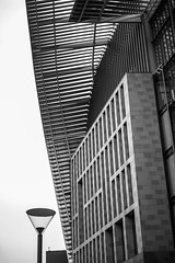 Francis Crick (marktmcn) Tags: francis crick institute research centre building facade eaves canopy frontage front slatted roofs lamp streetlamp architecture hof architects d610 nikkor 55mm midland rd st pancras london