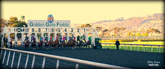 2018 California Oaks - Golden Gate Fields (billypoonphotos) Tags: consolida julian couton california oaks tinabud tapeta golden gate fields berkeley 2017 jockey horse racing thoroughbred dirt track photo picture photography photographer billypoon billypoonphotos nikon d5500 18140mm nikkor news stretch win finish synthetic race 18140 mm sign sport stadium building grass